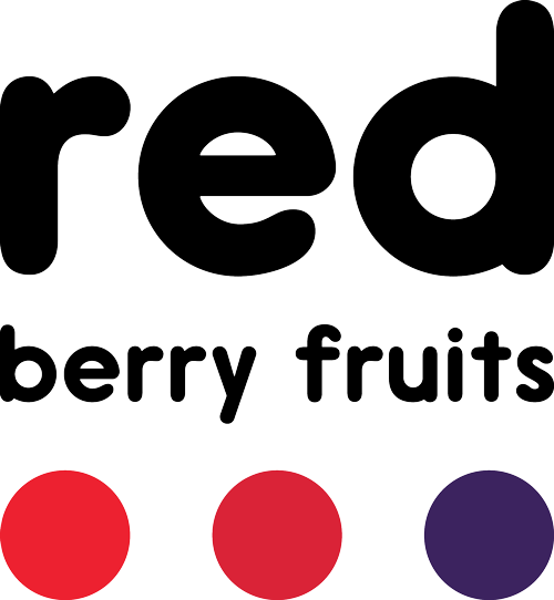 Red Berry Fruits